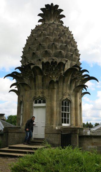 Dean Callan pineapple Dunmore.jpg