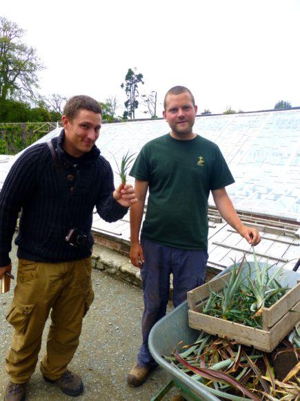 Dean Callan with pineapple farmer.jpg