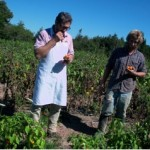 FoodFilmFest calling chefs in field