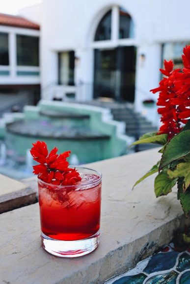 Floral Cocktail Story by Georgette Moger Omni Rosebiscus vertical 06 for edit_Rosebiscus Cocktail_Omni